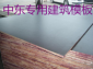 防水胶合板/建筑